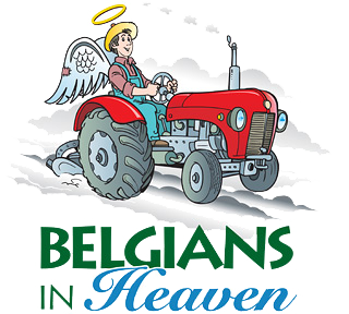 Belgians In Heaven Northern Sky Theater Play